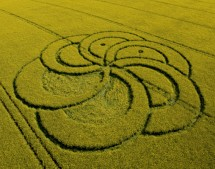 Silbury Hill, Wiltshire | 29th April 2011 | Oilseed Rape L