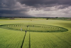Beckhampton, Wiltshire | 29th May 1995 | Barley | P 35mm Neg Scan
