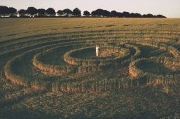 Longwood Warren, Hampshire | 26th June 1995 | Barley | P 35mm Neg Scan
