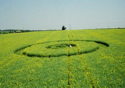 East Oakley 1, Hampshire   2nd June 1996   Oilseed Rape P 35mm Neg Scan