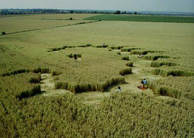 Liddington Castle 2, Wiltshire   2nd August 1996   Wheat P 35mm Neg Scan