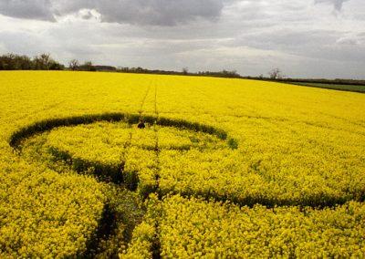 Girton, Cambridgeshire   11th May 1996   Oilseed Rape P 35mm Neg Scan