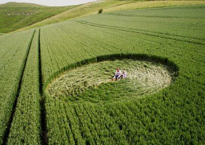 Cherhill, Wiltshire   1st June 1996   Barley P 35mm Neg Scan