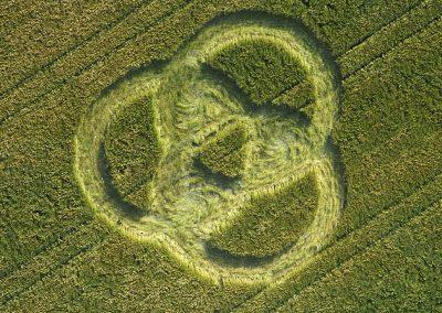Clarken Green, Hampshire   18th June 1996   Barley 35mm Neg Scan