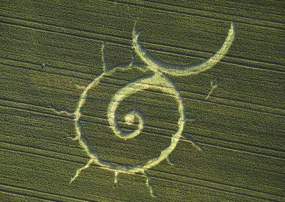 East Kennett Avebury, Wiltshire   13th July 1996   Wheat OH 35mm Neg Scan