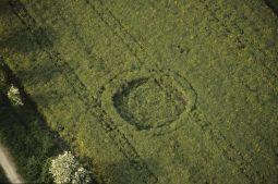 Chiseldon, Wiltshire   20th April 1998   Oilseed Rape 35mm