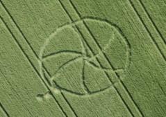 Avebury, Wiltshire   5th May 1998   Wheat 35mm