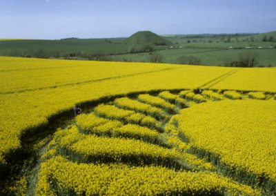 West Kennett Longbarrow, Wiltshire | 4th May 1998 | Oilseed Rape P2 35mm