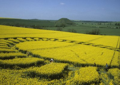 West Kennett Longbarrow, Wiltshire | 4th May 1998 | Oilseed Rape P 35mm