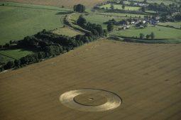 Avebury, Wiltshire   2nd August 1998   Wheat L 35mm