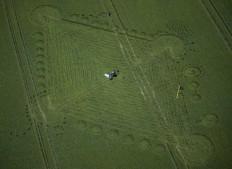 Stanton St Bernard, Wiltshire   17th August 1998   Linseed 35mm