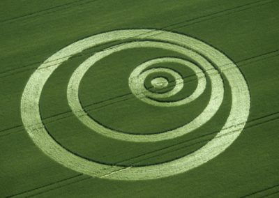 Penton Grafton, Hampshire | 30th May 1999 | Barley OH 35mm