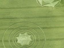 Beckhampton, Wiltshire   11th and 12th June 2000   Barley BO 35mm