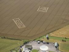 Chilbolton Radio Telescope (both), Hampshire   20th August 2001   Wheat  L 35mm