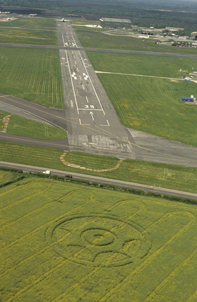 Hurn Airport, Dorset   19th May 2001   Oilseed Rape L 35mm