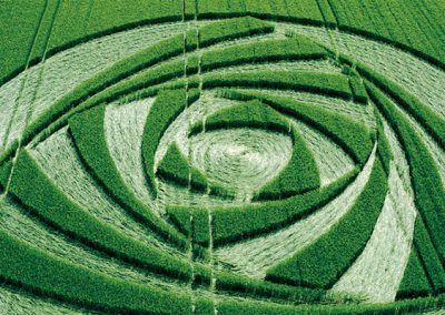 Berwick Bassett, Wiltshire   9th June 2001   Barley CL 35mm
