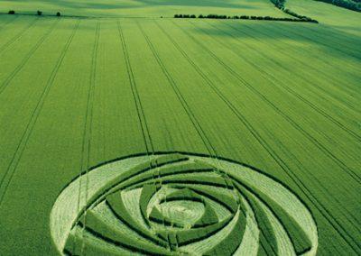 Berwick Bassett, Wiltshire | 9th June 2001 | Barley L  MFYB