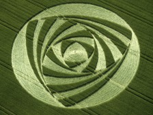 Berwick Bassett, Wiltshire   9th June 2001   Barley OH 35mm