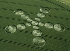 Beckhampton Gallops, Wiltshire   22nd June 2001   Wheat L 35mm