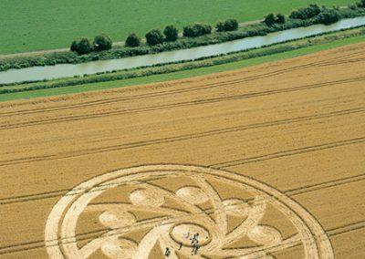 Woodborough Hill, Wiltshire   10th August 2001   Wheat L MFYB