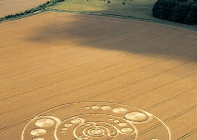 Golden Ball Hill, Wiltshire | 12th August 2001 | Wheat L MFYB