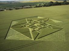 Green Street Avebury, Wiltshire | 6th July 2003 | Wheat L2 35mm