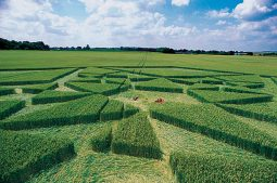 Green Street Avebury, Wiltshire | 6th July 2003 | Wheat P 35mm