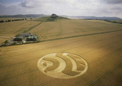 Woodborough Hill, Wiltshire| 14th July 2003 | Wheat L2 35mm