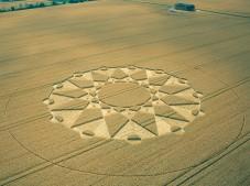 Huish, Wiltshire | 20th July 2003 | Wheat MFL