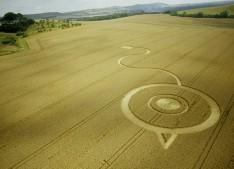 Woodborough Hill, Wiltshire | 24th July 2003 | Wheat L 35mm