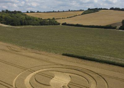 West Meon, Hampshire | 1st August 2004 | Wheat L