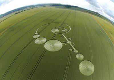 East Field Alton Barnes, Wiltshire | 20th June 2004 | Wheat  FE