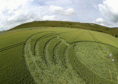 Milk Hill Alton Barnes, Wiltshire | 26th June 2004 | Wheat P3