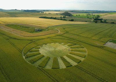 West Kennett Longbarrow, Wiltshire | 13th July 2004 | Wheat  L