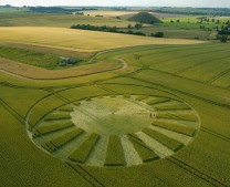 West Kennett Longbarrow, Wiltshire   13th July 2004   Wheat  L