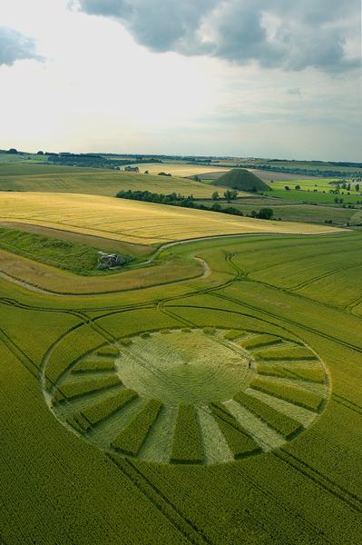 West Kennett Longbarrow, Wiltshire | 13th July 2004 | Wheat  L2