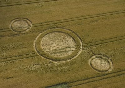 North Down, Wiltshire | 15th July 2004 | Barley