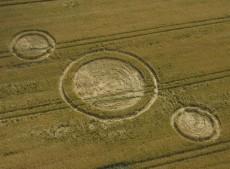 North Down, Wiltshire   15th July 2004   Barley
