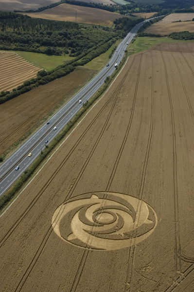 Beacon Hill Newbury, Berkshire | 28th July 2004 | Wheat L