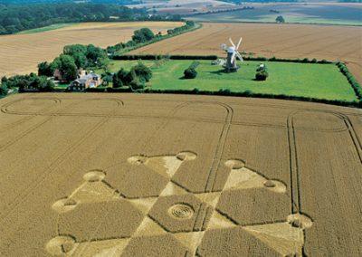 Wilton Windmill, Wiltshire | 7th August 2004 | Wheat L2