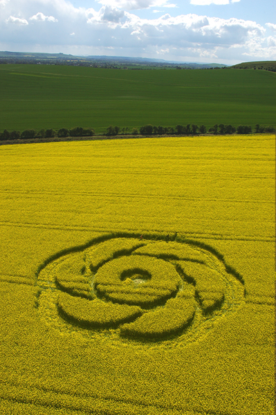 Golden Ball Hill, Wiltshire | 1st May 2005 | Oilseed Rape