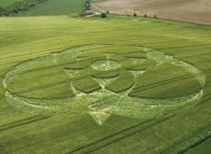 Clatford Bottom, Wiltshire | 12th June 2005 | Barley L
