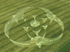 Clatford Bottom, Wiltshire | 12th June 2005 | Barley OH