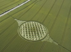 Stephen Castle Down, Hampshire | 20th June 2005 | Wheat L