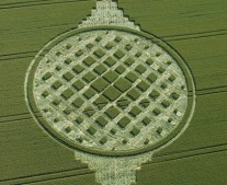 Stephen Castle Down, Hampshire | 20th June 2005 | Wheat OH