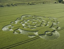 Lurkeley Hill East Kennett, Wiltshire | 22nd June 2005 | Barley L