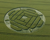 West Woods Lockeridge, Wiltshire | 22nd June 2005 | Wheat L