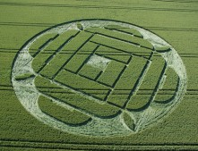 West Woods Lockeridge, Wiltshire | 22nd June 2005 | Wheat OH