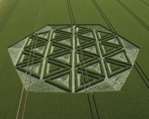 Windmill Hill, Wiltshire | 23rd June 2005 | Wheat L