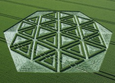 Windmill Hill, Wiltshire | 23rd June 2005 | Wheat OH